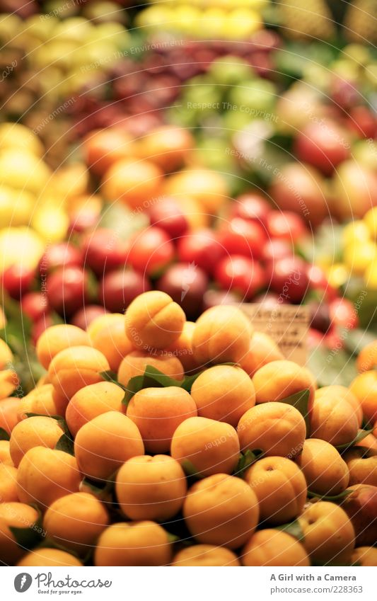 Apricots are on sale today.... Food Fruit Plum Organic produce Healthy Juicy Sweet Multicoloured Vitamin Stack Markets Market stall Orange Offer Interior shot