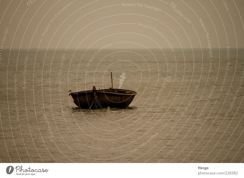 offshore Nature Ocean Loneliness Dream Environment Rowboat