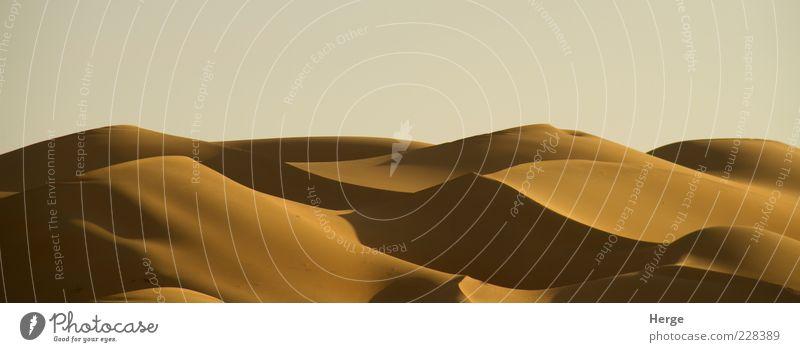 dunes Vacation & Travel Sand Landscape Environment Tourism Desert Warm-heartedness