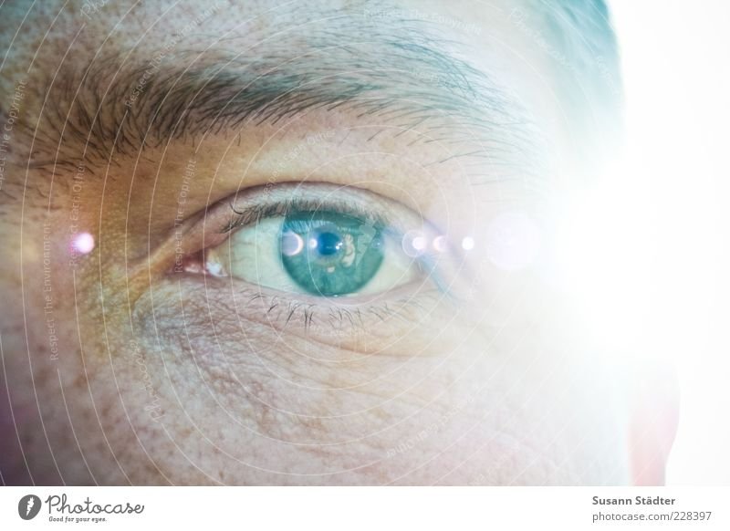 Man Green Adults Face Eyes Bright Power Glittering Natural Masculine Authentic Exceptional Might Observe 18 - 30 years Passion