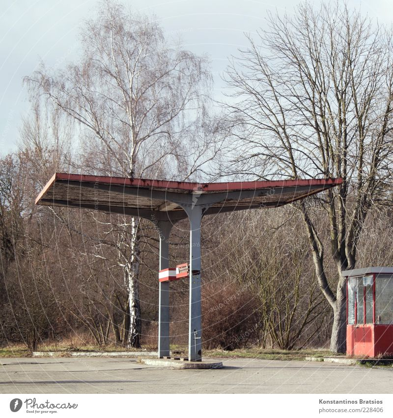 rotten gas station Energy crisis Beautiful weather Tree Hut Petrol station Old Broken Gray Red Crisis Colour photo Exterior shot Deserted Day