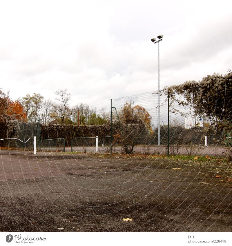 Sky Plant Autumn Gloomy Asphalt Fence Net Tennis Lamp post Floodlight Ball sports Sporting Complex Tennis court