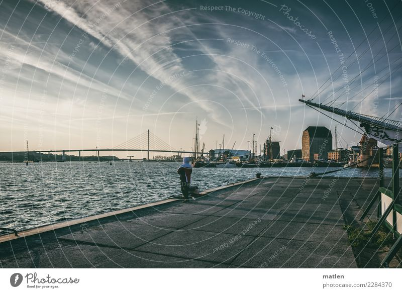 cold Stralsund morning Man Adults Town Port City Old town House (Residential Structure) Church Harbour Bridge Manmade structures Tourist Attraction Navigation