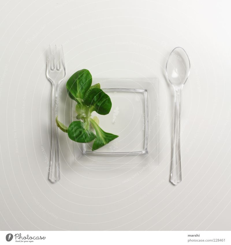 salad diet Food Lettuce Salad Nutrition Picnic Organic produce Vegetarian diet Diet Crockery Plate Cutlery Fork Spoon Healthy Green White Lamb's lettuce
