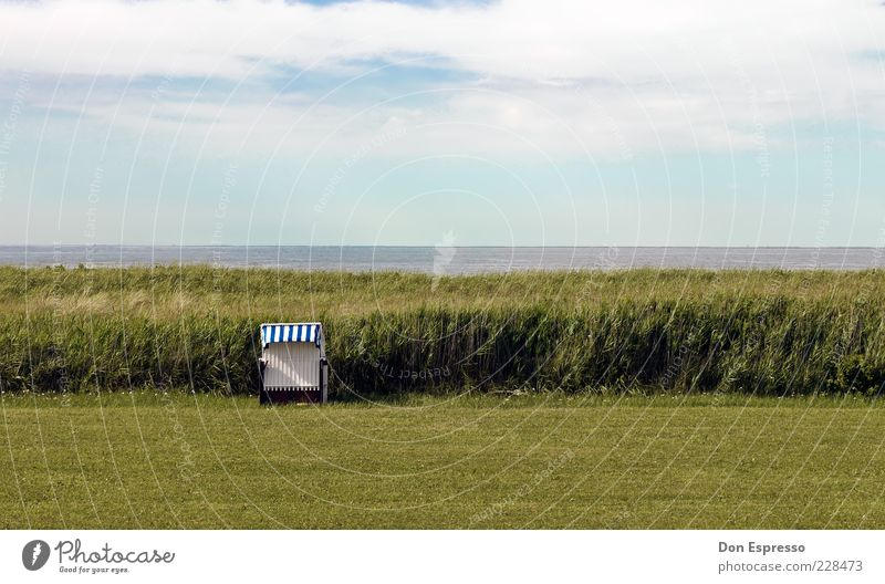 Sky Nature Water Summer Ocean Beach Far-off places Relaxation Meadow Environment Landscape Grass Coast Spring Contentment Field