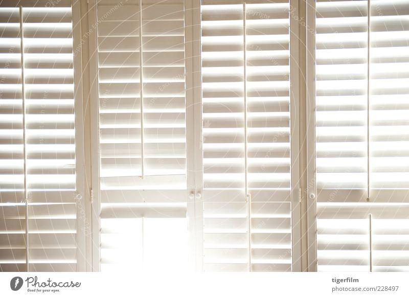 shutter light White Lamp Window Line Door Background picture Illuminate Beautiful weather Afternoon Shutter Knob
