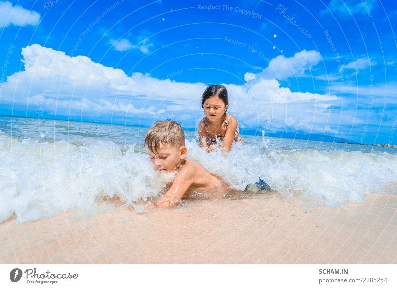 Cute kids having fun on the sunny tropical beach. Child Human being Blue Summer Beautiful Landscape Sun Ocean Joy Girl Beach Life Lifestyle Natural Boy (child)
