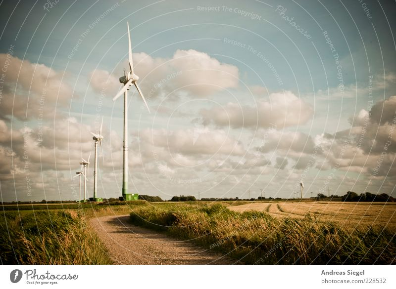 Sky Nature Summer Clouds Far-off places Meadow Environment Landscape Grass Lanes & trails Field Fresh Natural Energy industry Climate Change