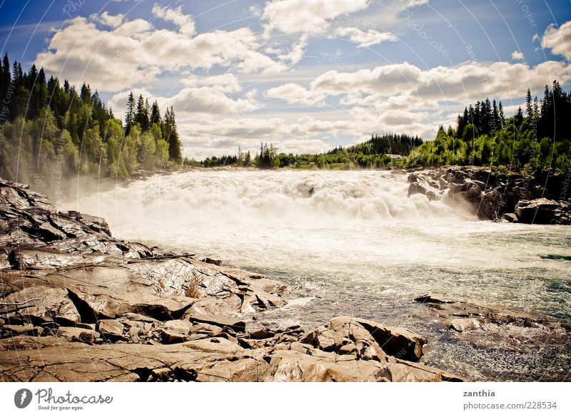 rapids Environment Nature Landscape Water Sky Clouds Sunlight Summer Beautiful weather Tree Forest River bank Rapid Waterfall Wild Blue Green Movement Norway