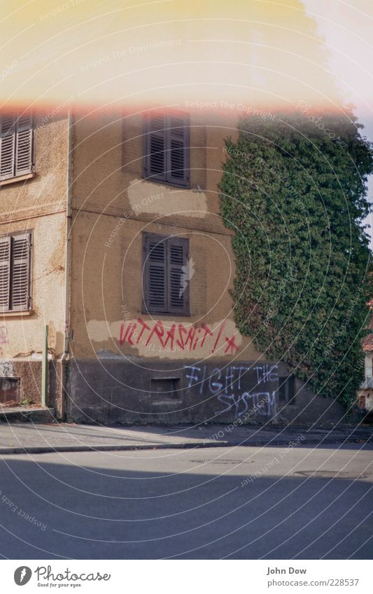 Old House (Residential Structure) Street Window Architecture Graffiti Building Facade Wild Bushes Manmade structures Transience Asphalt Derelict Past Analog