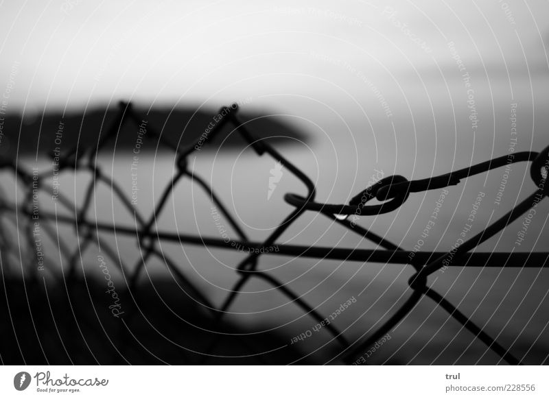 morning dew Water Drops of water Sky Summer Coast Beach Bay Wire netting fence Far-off places Black & white photo Exterior shot Detail Deserted Morning Dawn