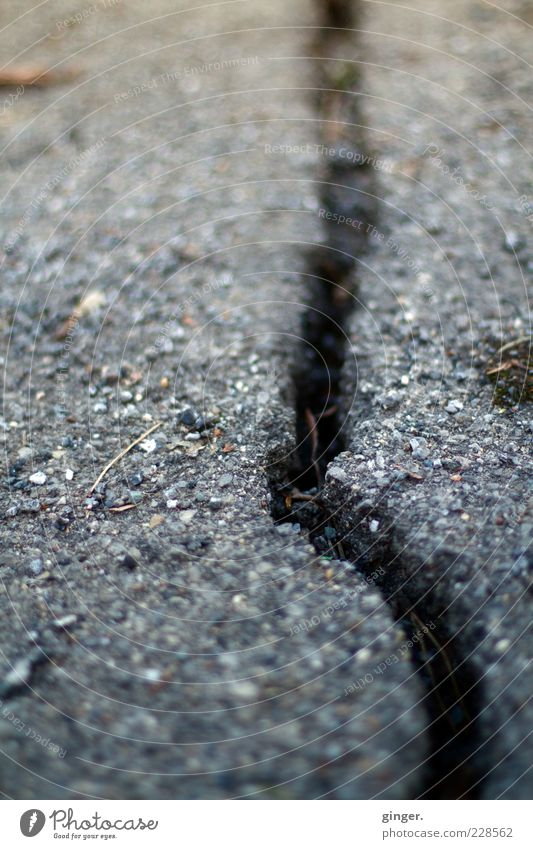 Winter Environment Street Gray Ice Climate Broken Frost Asphalt Crack & Rip & Tear Surface Damage Torn Irregular