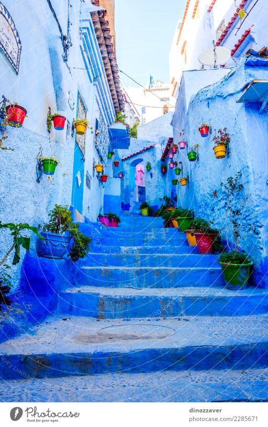 Blue street in Chefchaouen, Morocco Pot Vacation & Travel Tourism Mountain House (Residential Structure) Culture Plant Flower Village Town Building Architecture