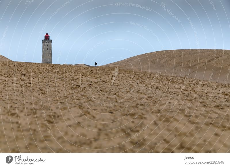 Lonely man walking towards lighthouse in wide dune landscape. Target Lighthouse Single-minded Denmark Historic Lanes & trails Old Loneliness Human being