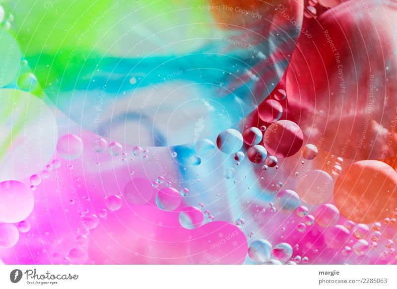 All over the place, you colorful bubbles! Playing Blue Multicoloured Green Violet Orange Red Joy Happy Happiness Chaos Uniqueness Leisure and hobbies Ease Dream