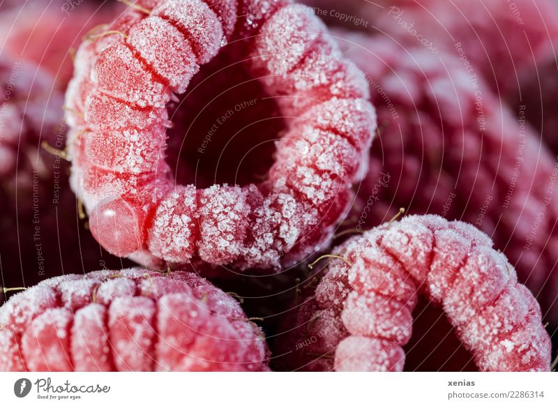 Healthy Eating Red Cold Fruit Nutrition Fresh Sweet Delicious Harvest Frozen Organic produce Vegetarian diet Vitamin Ice crystal Raspberry