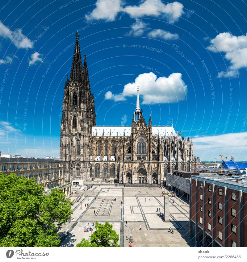 The cathedral in Kölle Cologne Cathedral Old town Pedestrian precinct Skyline Church Dome Manmade structures Building Architecture Blue Green Belief