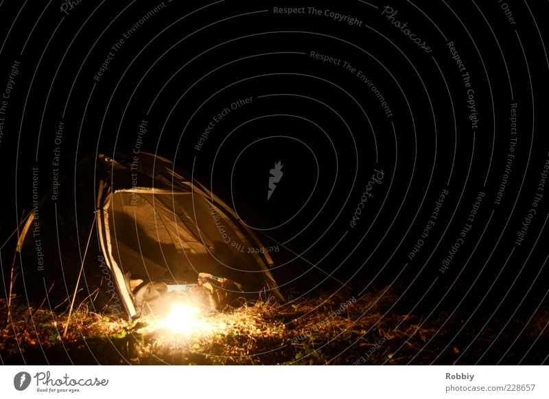Nature Vacation & Travel Calm Loneliness Far-off places Relaxation Dark Environment Grass Lamp Leisure and hobbies Adventure Free Discover Camping Tent