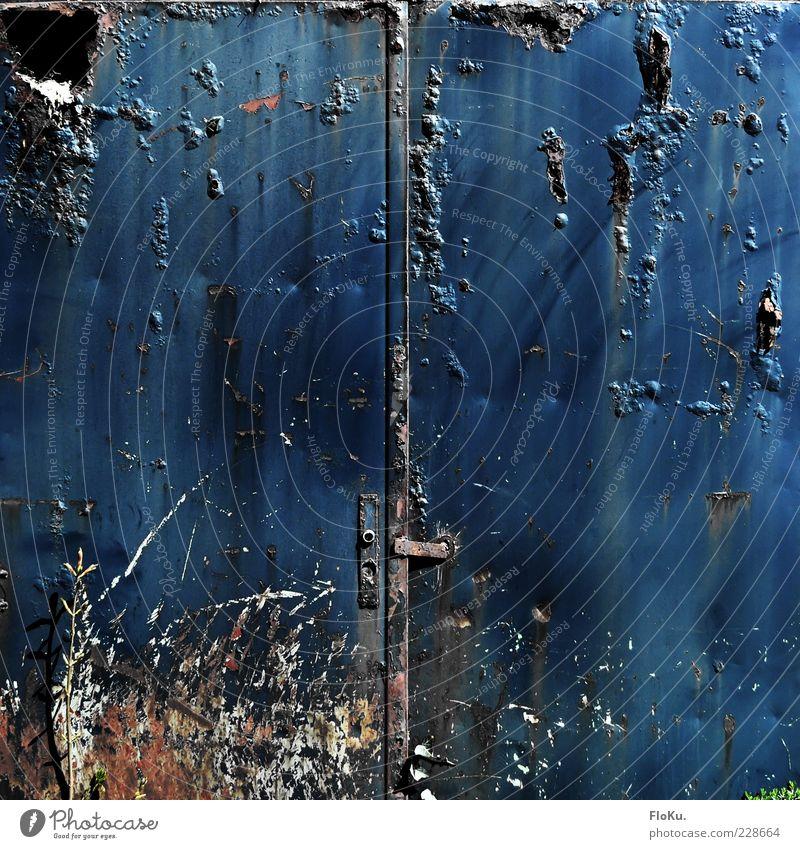 Old Blue Dark Metal Door Fear Dirty Closed Poverty Dangerous Broken Transience Derelict Creepy Gate Past