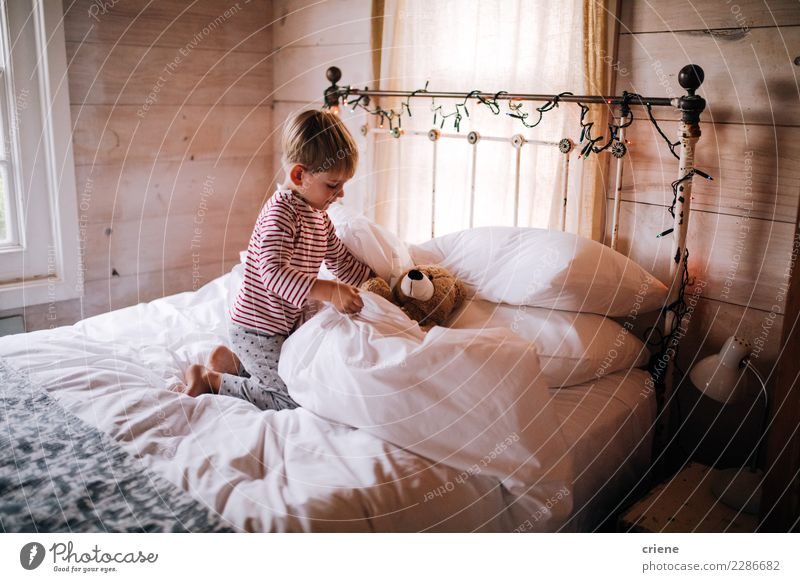 Cute little boy puts teddy to sleep Lifestyle Winter Bedroom Child Human being Masculine Toddler Boy (child) Infancy 1 1 - 3 years 3 - 8 years Hut Toys
