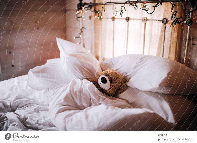 Teddy sleeping under blanket in bed Cute Sleep Toys Home Fatigue Delightful Teddy bear
