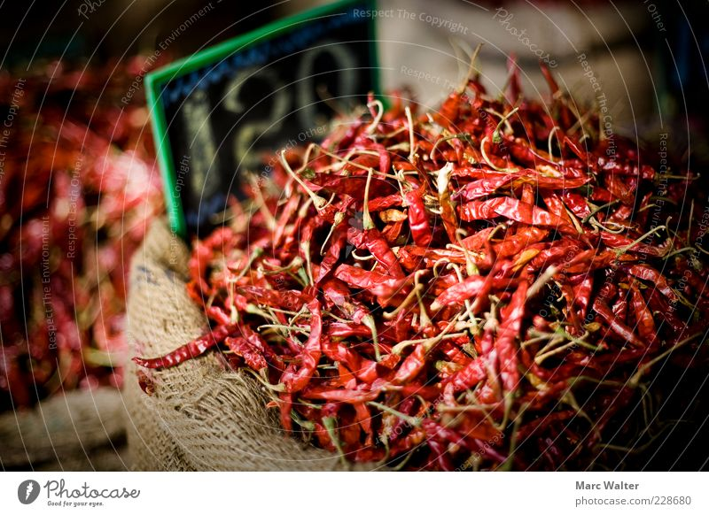 Hot business Food Chili Tangy Nutrition Asian Food Exotic Red Trade Markets Market stall Sack Price tag Spice store Spice stall India Bombay