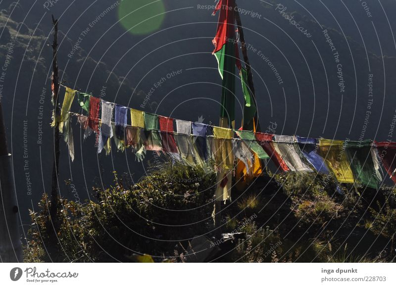 Windhorse Lungta Harmonious Relaxation Calm Freedom Expedition Nepal Buddhism Religion and faith Prayer flags Tibet Sunlight Sign Asia Gray Happy Belief