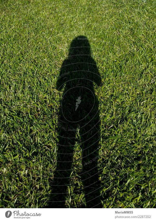 Shadow of woman on background grass Lifestyle Joy Leisure and hobbies Trip Adventure Far-off places Freedom Camping Summer Sun Garden Sports Fitness