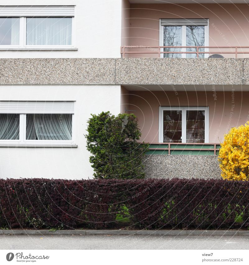 Loneliness House (Residential Structure) Window Wall (building) Architecture Wall (barrier) Building Pink Facade Car Window Modern Esthetic Authentic Bushes