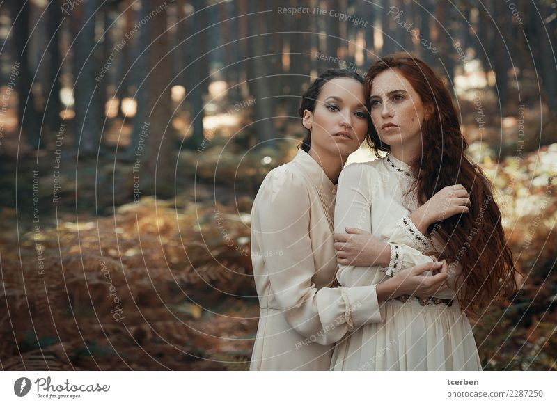 Portrait of two young women hugging in an autumnal forest Human being Nature Youth (Young adults) Old Young woman Sun Tree Forest 18 - 30 years Adults Love