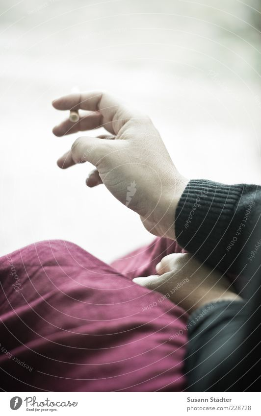 Hand Calm Arm Wait Fingers Break Smoking To hold on Jacket Skirt Cigarette Sweater Addiction Retentive