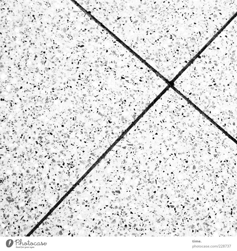 Loneliness Stone Line Bright Concrete Arrangement Ground Floor covering Crucifix Square Seam Furrow Bird's-eye view Symmetry Accuracy Dappled