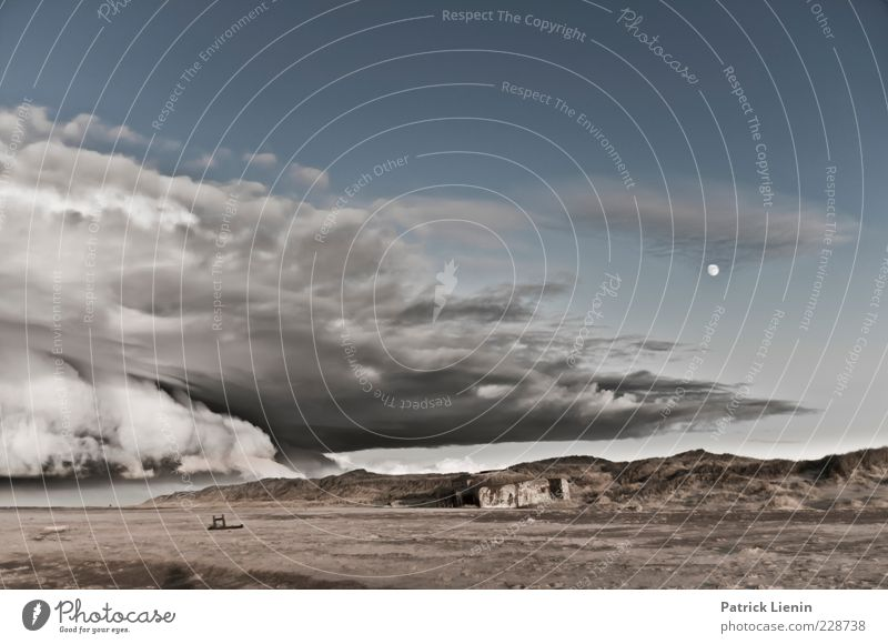 Sky Nature Heaven Ocean Landscape Clouds Far-off places Winter Beach Environment Coast Gray Moody Rain Wild Weather
