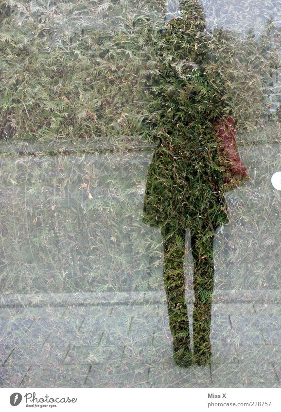 Human being Youth (Young adults) Adults Window Exceptional 18 - 30 years Window pane Anonymous Young woman Take a photo Self portrait Woman Mirror image Pane