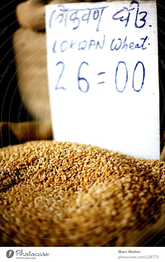 Grainy offer Food Wheat Wheat grain Nutrition Organic produce Vegetarian diet Price tag Sell Simple Healthy Sustainability Natural Dry Brown Yellow Gold Nature