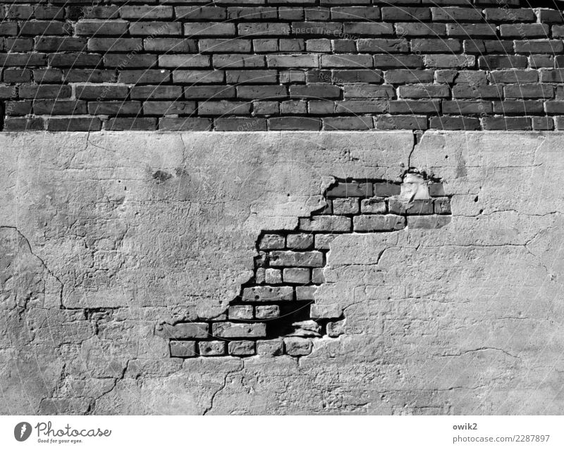 archaeology Wall (barrier) Wall (building) Facade Plaster Rendered facade Brick Brick wall Concrete Old Trashy Adversity Feeble Decline Transience Destruction