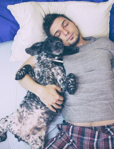 Young man sleeping with his dog Lifestyle Wellness Harmonious Well-being Relaxation Bed Human being Masculine Youth (Young adults) Man Adults 1 30 - 45 years