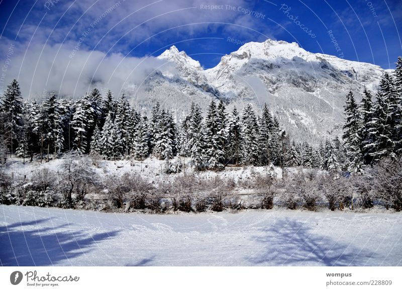 Augenweide Nature Landscape Plant Sky Clouds Beautiful weather Park Meadow Field Forest Hill Rock Alps Mountain Peak Snowcapped peak Blue Brown Gray Green White