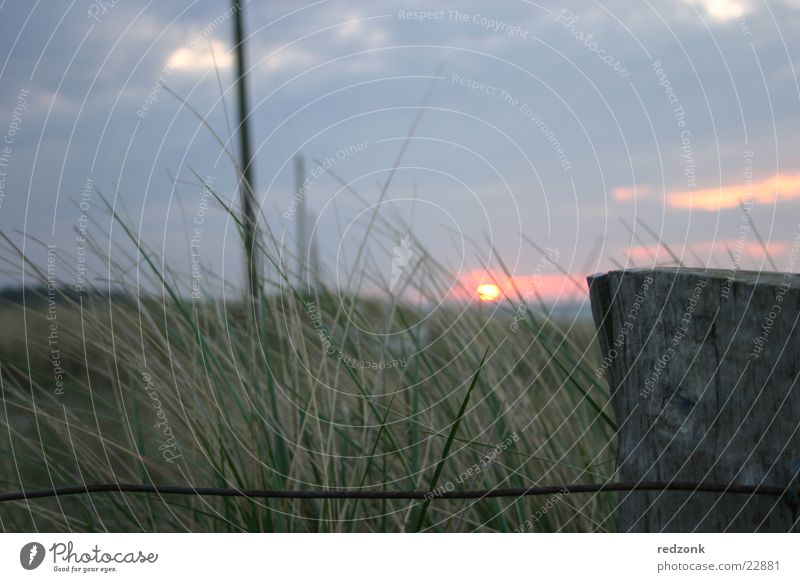 Sun Ocean Clouds Meadow Grass Hill Fence Beach dune Electricity pylon