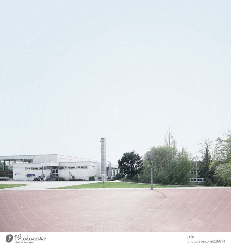 Sky Tree Plant Meadow Building Large Bushes Chimney Cloudless sky Sporting grounds Flat roof Sporting Complex