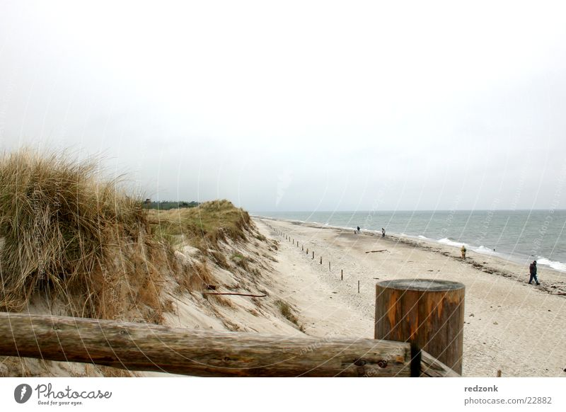 Water Ocean Beach Vacation & Travel Relaxation Sand Waves Europe Beach dune Baltic Sea Handrail Prerow
