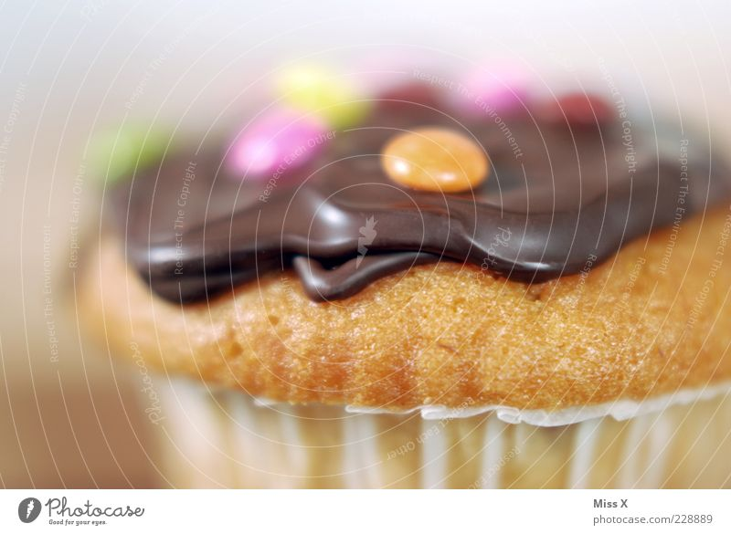 muffin Food Dough Baked goods Cake Dessert Candy Chocolate Nutrition Small Delicious Round Juicy Sweet Muffin Chocolate buttons Ornate Decoration Colour photo