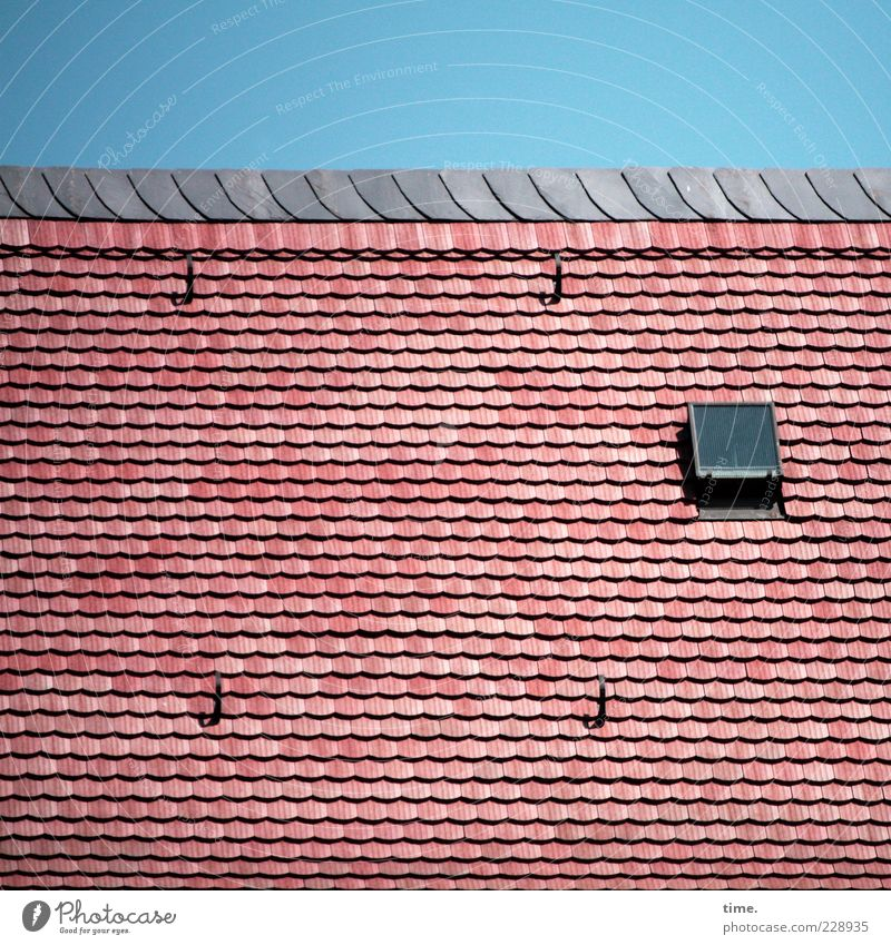 Sky Red Arrangement New Roof Protection Individual Roofing tile Hatch Skylight Pattern Tiled roof Brick construction