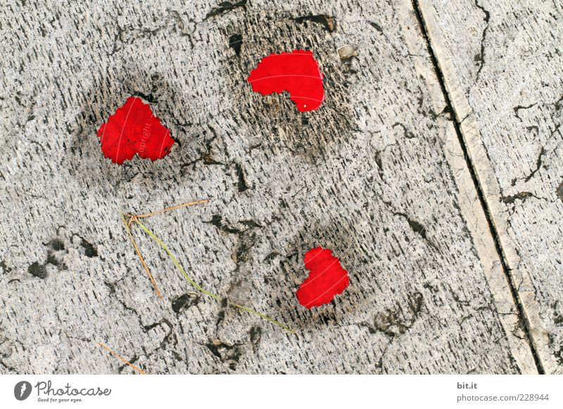Red Joy Life Love Happy Gray Feasts & Celebrations Friendship Decoration Birthday Wet Joie de vivre (Vitality) Heart Sign Ground Romance