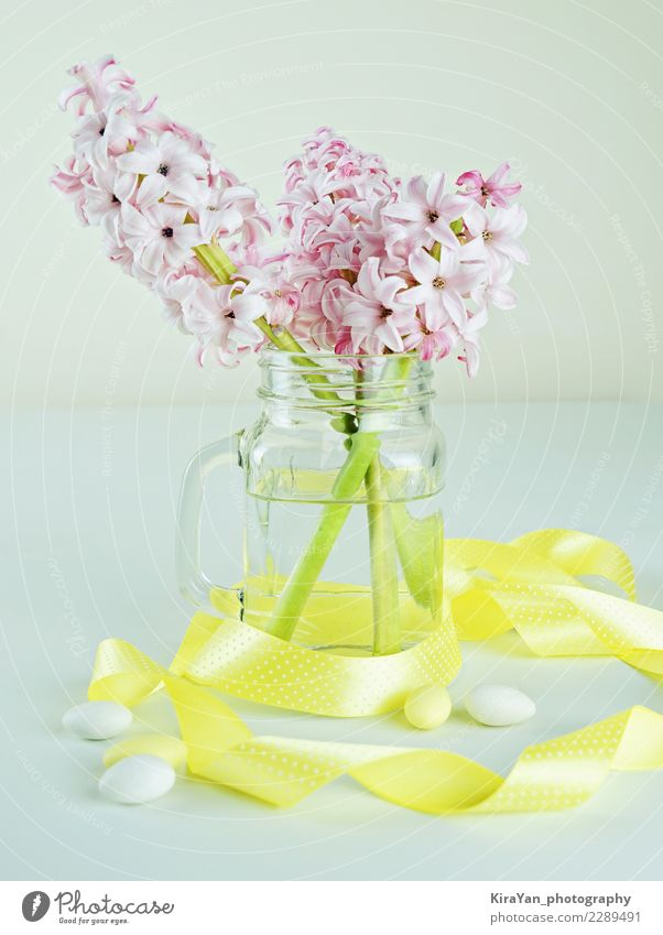 Concept for Mother's day gift and Women's Day Beautiful Decoration Valentine's Day Mother's Day Easter Birthday Event Blossom Bouquet Water Blossoming Fresh