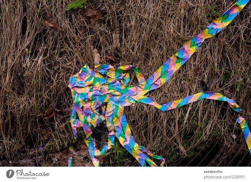 Nature Old Plant Meadow Grass Lie Paper Stripe Bushes Decoration End Confetti Paper streamers