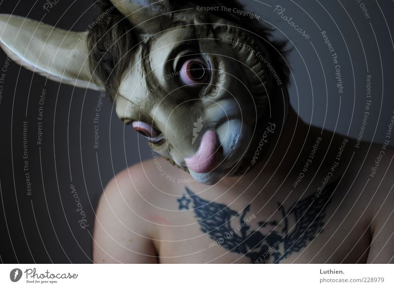 Human being Woman Blue Adults Cold Gray Brown Exceptional Skin Mask Carnival Creepy Chest Tattoo Whimsical Hare & Rabbit & Bunny