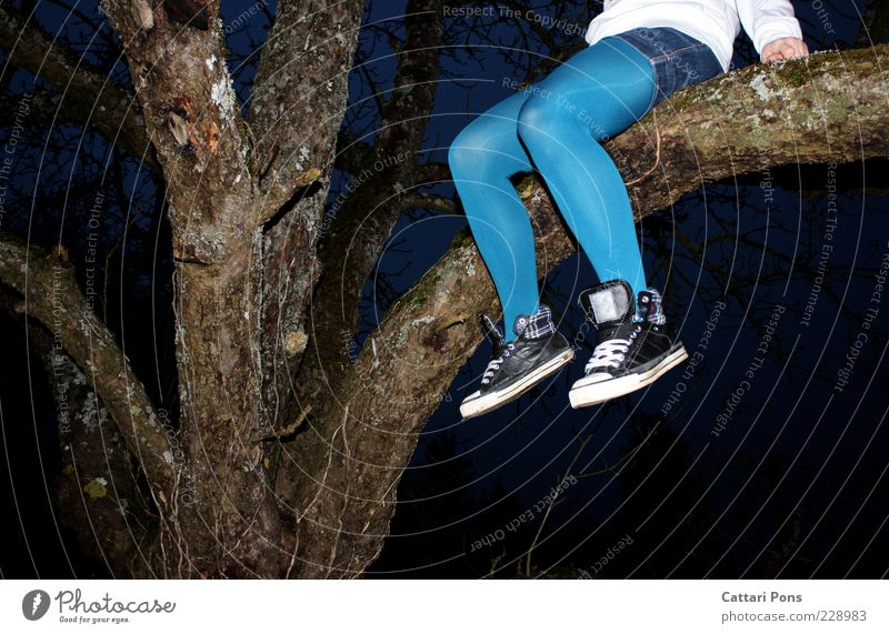 stay up Human being Feminine Young woman Youth (Young adults) Legs 1 Plant Tree To hold on Wait Blue Sit Footwear Tights Copy Space bottom Dangle Sneakers