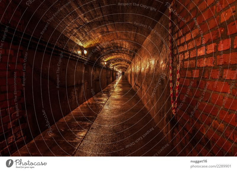 the tunnel Leisure and hobbies Vacation & Travel Tourism Trip City trip Hiking Interior design Cellar Mining Thuringia Germany Castle Ruin Tunnel Gate