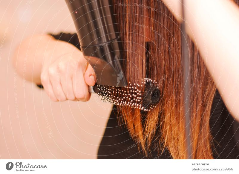 woman drying her hair with brush and hairdryer Woman Human being Beautiful Hand Adults Lifestyle Hair and hairstyles Fashion Brown Work and employment Elegant